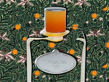 Infusion de Fleurs d'Oranger от Прада в музее Orsay в Париже