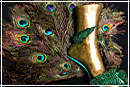 Туфли-монстры: в мире цветов и животных