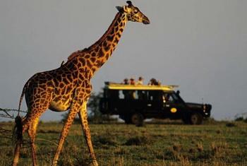 Семейный отдых в Кении с Abercrombie & Kent