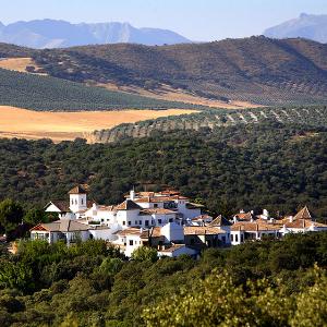 Испанский отель предлагает гостям познакомиться с процессом приготовления икры