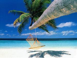 Полинезия – на 13 000 туристов меньше с начала года