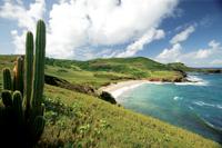 Raffles Hotels & Resorts начнет строительство элитного жилья на Карибах и в Азии
