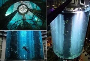 Самый большой в мире аквариум - в берлинском Radisson Hotel