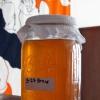 Чайный гриб: противопоказания и рекомендации по использованию