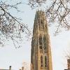 Обучение в Йельском университете – одном из старейших в США