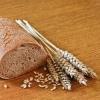 Пророщенная пшеница: почему она популярна