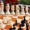 Вниманию коллекционеров: уникальные шахматы из мамонтового бивня от House of Staunton