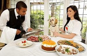 Дорогой отель для собак предлагает услуги дворецкого